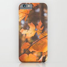 red autumn leaves iPhone 6s Slim Case