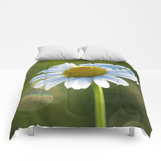 Daisy after rain at backlight Comforters