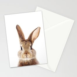 Baby Rabbit, Brown Bunny, Baby Animals Art Print By Synplus Stationery Cards