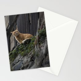 An orange cat in Japan Stationery Cards