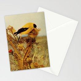Neltje Blanchan - Bird Neighbours (1903) - Goldfinch Stationery Cards