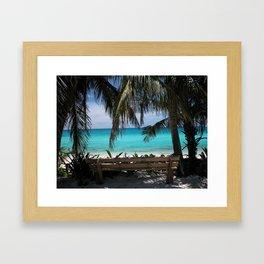 Tropical Bench Bimini Bahamas Framed Art Print