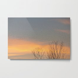 Sunrise in Montgomery Metal Print