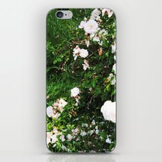 chintz iPhone & iPod Skin