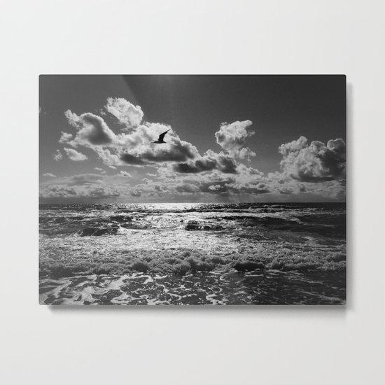 Seagull over sea Metal Print