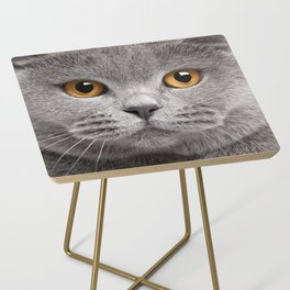 Cat in Grey Side Table