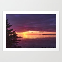 Kodiak Sunrise Art Print