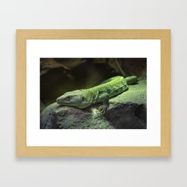 Jeweled Laceta Framed Art Print