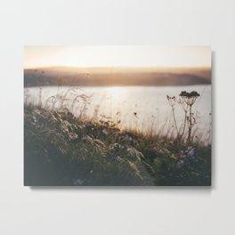 flowers at sunset Metal Print