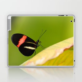 Butterfly - Climbing the hill Laptop & iPad Skin