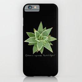 Succulent Species Echeveria agavoides 'Martin's Hybrid' Black iPhone Case