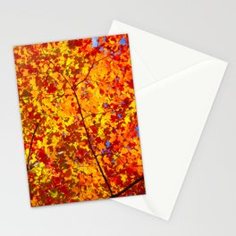 Blazing Fall Canopy Stationery Cards