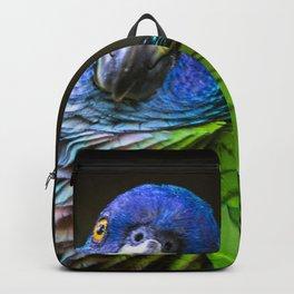 Amazona Versicolor Backpack