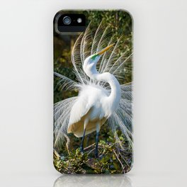 Graceful Great Egret iPhone Case
