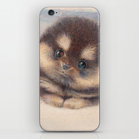 Pomeranian iPhone & iPod Skin