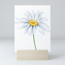 Spring Daisies On Sky Blue Watercolour Mini Art Print