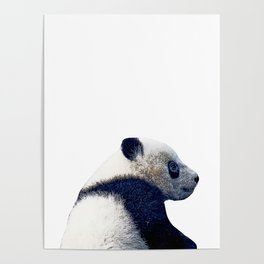 614c71e3dfbb baby panda Posters