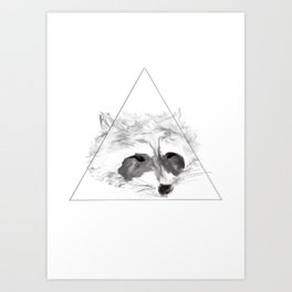 Racoon Art Print