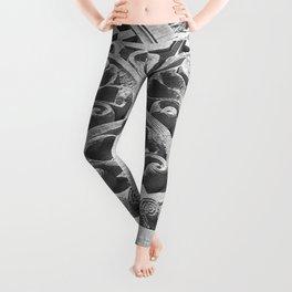 The Zipper Leggings