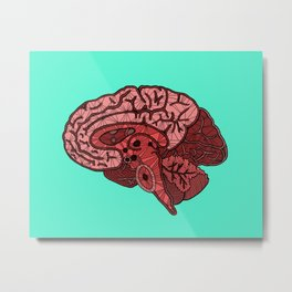 Brain Map Metal Print