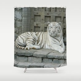 Zoo Tiger Shower Curtain