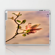 Pink Magnolia Laptop & iPad Skin