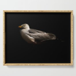 Herring Gull Serving Tray