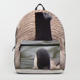 Beautiful Canadian Goose Swimming On Peaceful Pond Backpack