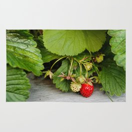 Wild Strawberry Photography Print Rug