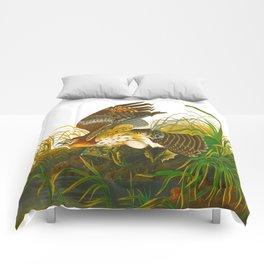 Winter Hawk Comforters
