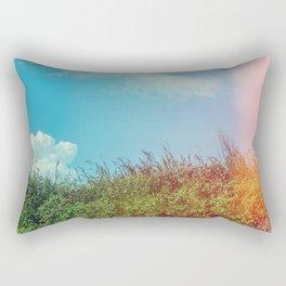 Explore Rectangular Pillow