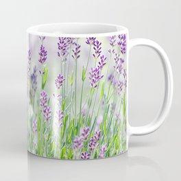 Lavender in summer garden Coffee Mug