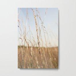Fields II Metal Print