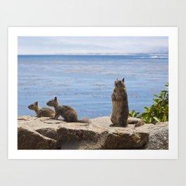 Three Squirrels on the Coast Art Print