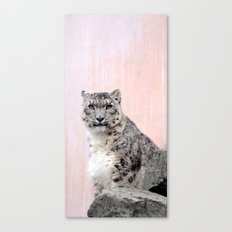 Snow Leopard in Pink Canvas Print