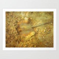 Razafish Art Print