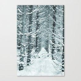 Nordic Kingdom Canvas Print