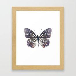 Black and White Butterfly Framed Art Print