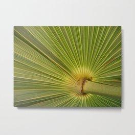 Verde Palma Cozumel Metal Print