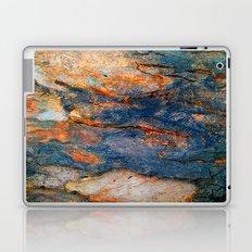 Bark Texture 43 Laptop & iPad Skin