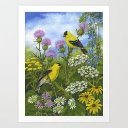 Goldfinches and Thistle Art Print