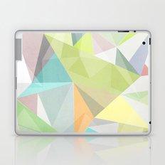 Nordic Combination 11 Laptop & iPad Skin