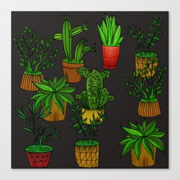 Plants and vases Canvas Print