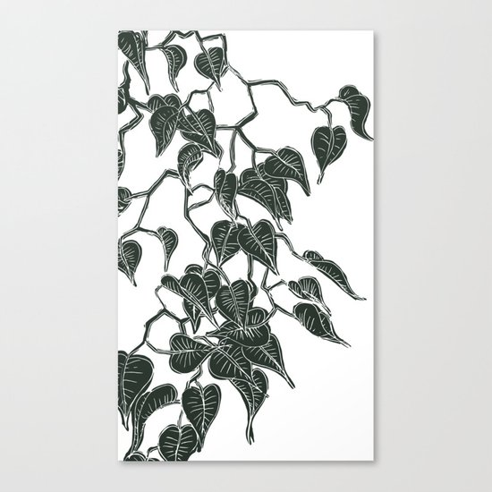 Philodendron in Dark Canvas Print