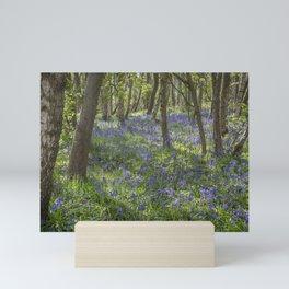 Seabrook Bluebells Mini Art Print