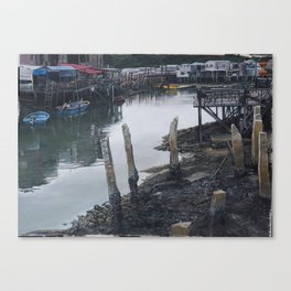 In A Better Light Canvas Print