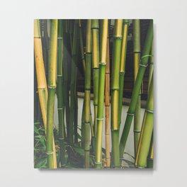 Bamboo Wall Metal Print