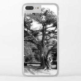 Halt Clear iPhone Case
