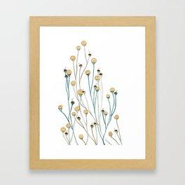 Water Plants Framed Art Print