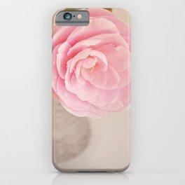 Single pink Camelia rose in clear vintage vase. iPhone Case